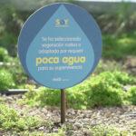El nuevo edificio de Coca-Cola, certificado como el más sustentable de Argentina