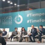 Andreani integró la delegación CEADS en la Cumbre de Cambio Climático de la ONU