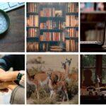 Fundaciones Grupo Petersen promueve sus contenidos virtuales