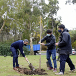 Con la plantación de 150 árboles, se busca enriquecer el cordón verde en el paseo del bosque en La Plata